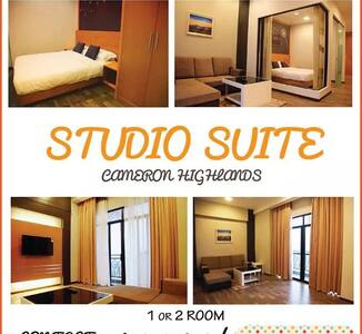 Cameron Holiday Studio Suite