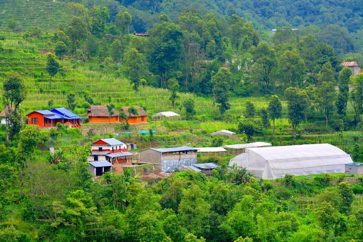 Indreni Organic Farm &  Homestay