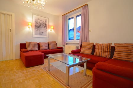 Spacious 2 bedroom appt Zell-am-See - Zell am See - Pis