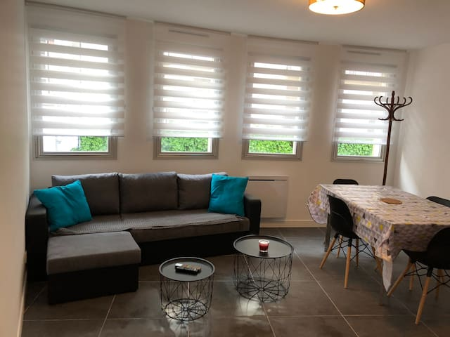 New contemporary  BLUE 2 bedroom flat Melun centre