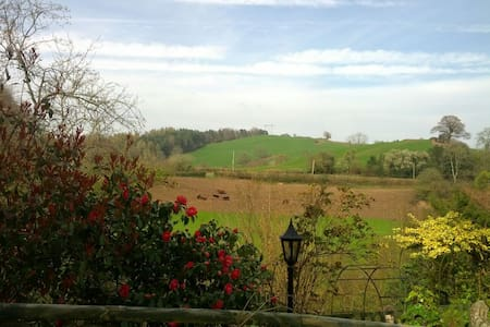 Brookview  Cottage Annexe - Forest of Dean - House
