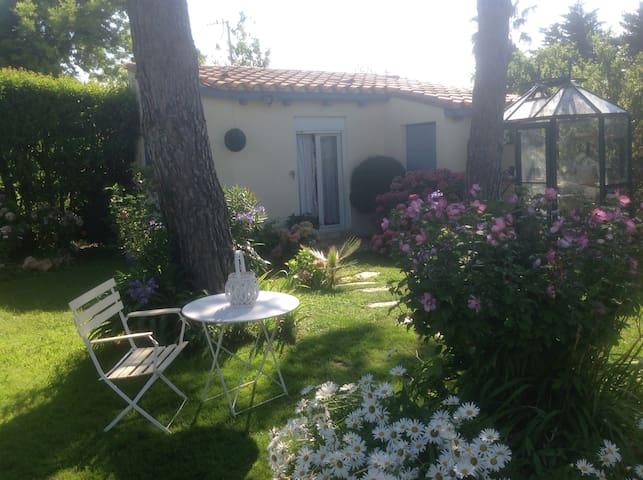 Vivez des bons moments au soleil du Roussillon