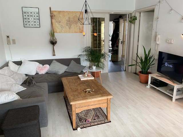 Bright spacious & cosy APT in center with Netflix!