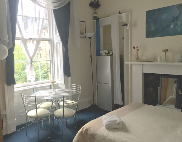 Beautiful studio flat near Glasgow University (2)