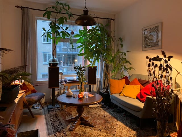 lovely appartement near Oosterpark