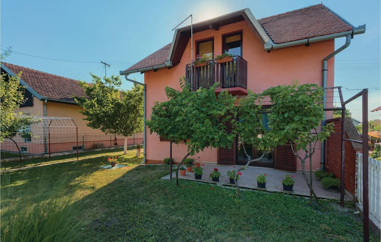 Holiday cottage with 3 bedrooms on 78 m² in Dalj