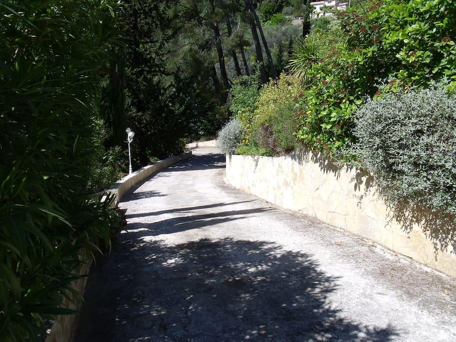 Chemin privé intérieur à la propriété