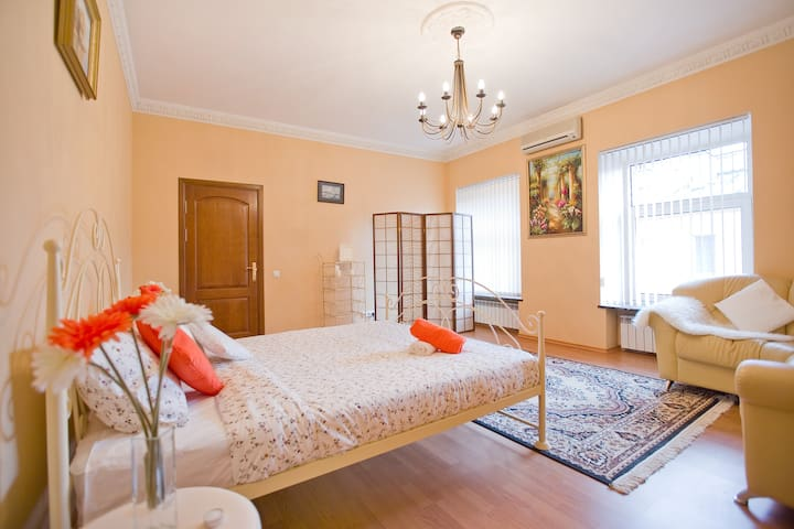 BEST OFFER! Deluxe 2 rooms apartment,Nevsky avenue - Sankt-Peterburg - Apartment