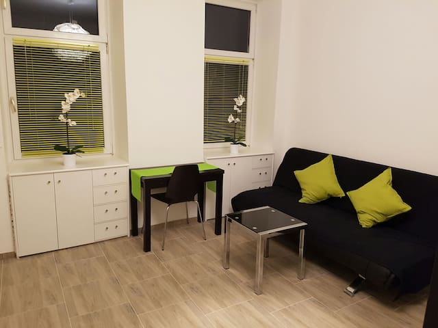 Quiet Appartment for couple & Family - Wien - Flat
