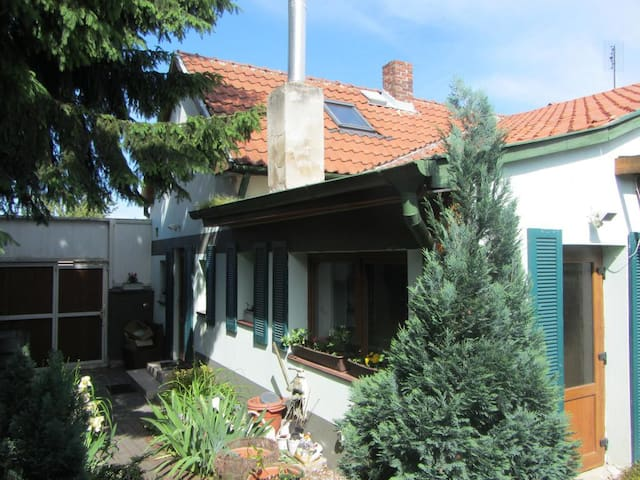 Agnesa House - absolute privacy - Prague - House