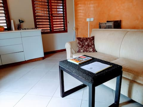 Palm View Garden Apartment in St. George's