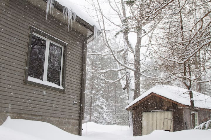 Winter Wonderland Muskoka Cottage