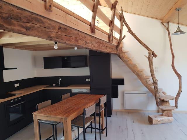 Bel appartement avec mansarde et terrasse
