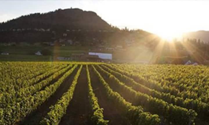 West Kelowna Wine Trail Hideaway