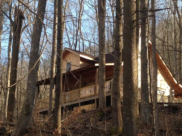 UNIQUE CHARM LOG CABIN IN THE WOODS - Robbinsville - Cabana