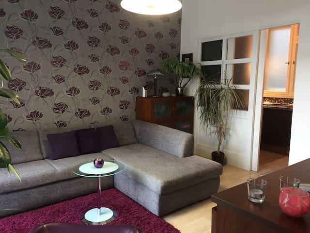 Quiet non-smoking apartment in the heart of Prague - Prague - Apartment
