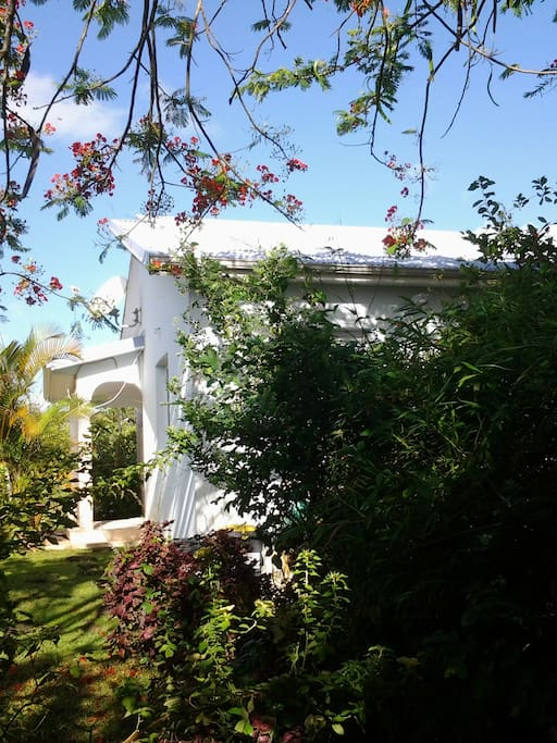 La maison Bleue de Long Bois Villas for Rent in Saint Joseph, Fort de France, Martinique # La Roche Bleue Saint Bois