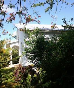 La maison Bleue de Long Bois - Saint-Joseph - 別荘