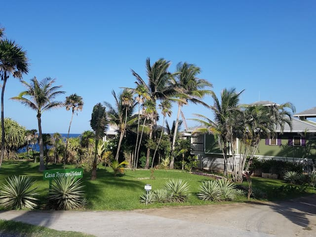 Casa Tranquilidad - Ocean Front, Walk to West Bay