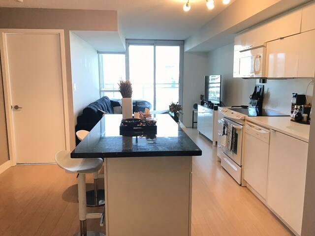 Beautiful furnished blackandwhitemodern apartments