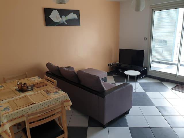 F3 meublé en plein centre-ville de Saint-Paul