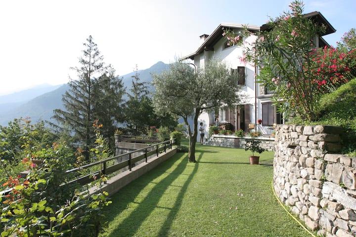 Il Pulcino di Maria, Moltrasio, Lake Como