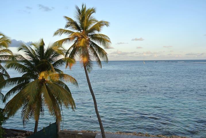 Vue imprenable devant le lagon!! accès mer! - GP - Apartment