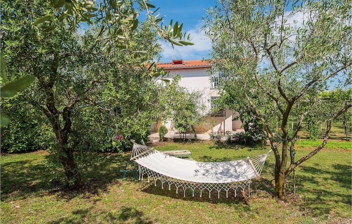 Nice home in Fazana with WiFi and 0 Bedrooms