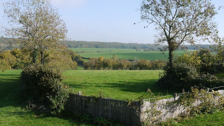 Quiet B&B in Changey, stunning view sleeps 2-5 - Changey - Aamiaismajoitus