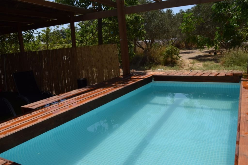 swiming pool with view