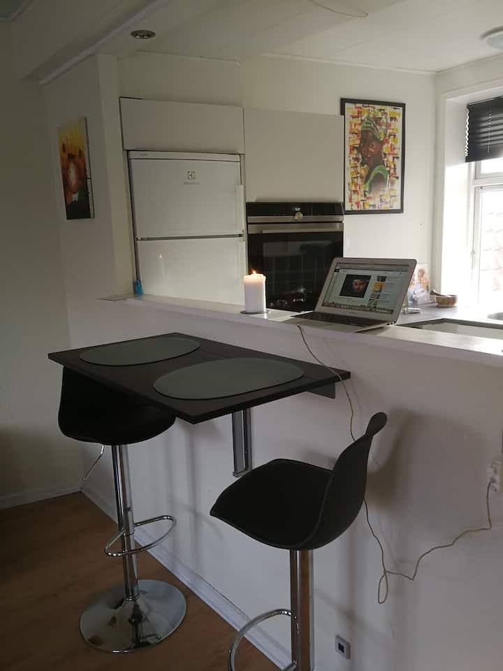 Moderne Studio i hjertet af Aalborg City