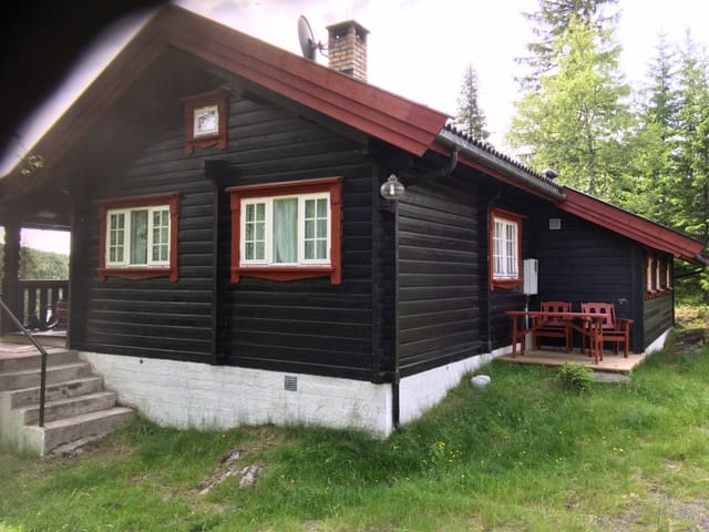 Spacious, Mylla in Lunner,  50 km north of Oslo - Grua