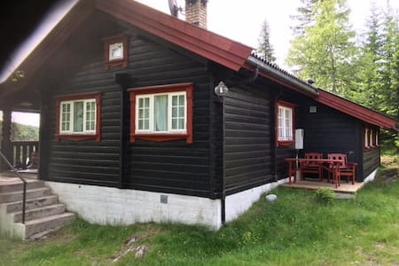 Spacious, Mylla in Lunner,  50 km north of Oslo - Grua - Cabin