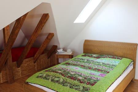 Near Frankfurt/Main, nice quiet room, own bathroom - Friedberg (Hessen) - Lakás