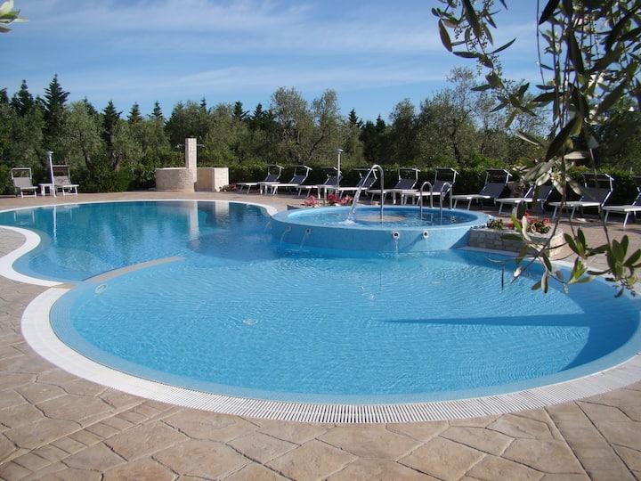 Bauernhaus umgeben von Olivenbäumen mit Pool