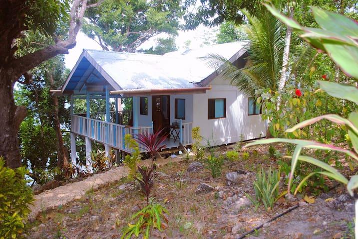 Spacious and Romantic Beach House - Busuanga - Villa