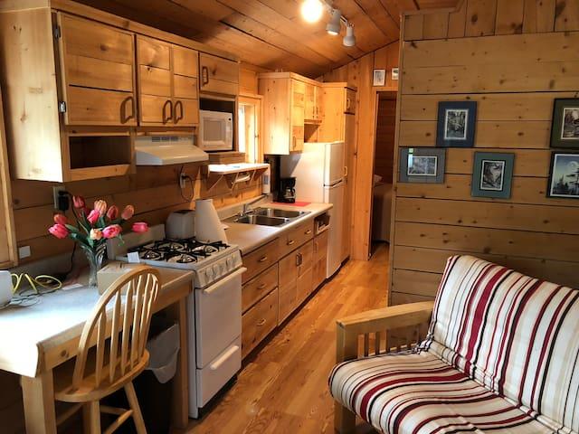 Cooking Cabin 2 Ninikchik, Ak.