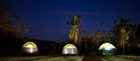 Reunite with nature at The Twig Homestay