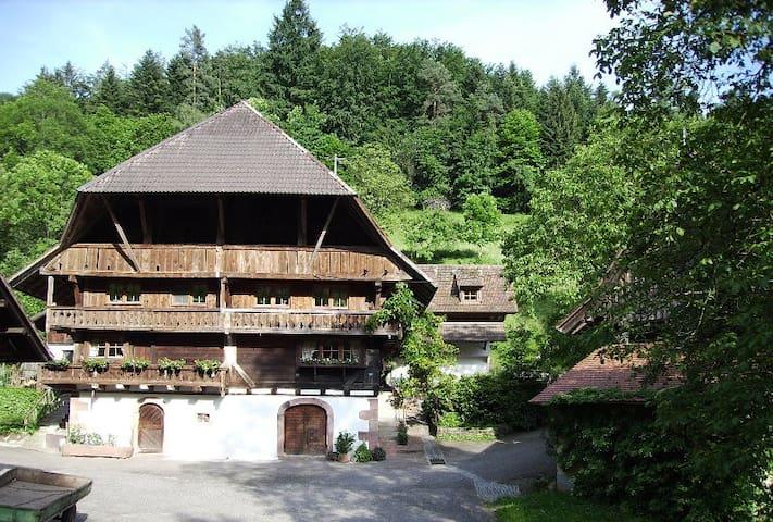 Oberer Schwärzenbachhof - Igelbau - Gengenbach - Apartemen