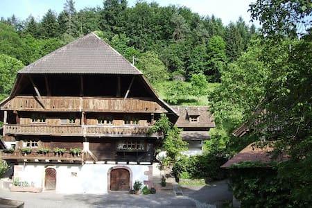 Oberer Schwärzenbachhof - Igelbau - Gengenbach