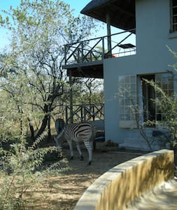 Time out in Nature Reserve bordering Kruger Park