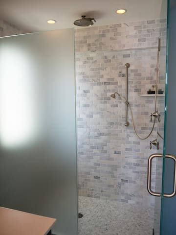 Master suite 2 walk-in shower