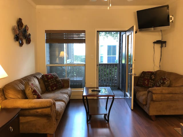 Medical Center and NRG Stadium Cozy Modern Condo