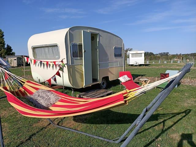 Honey the Vintage Caravan @ 175 Hearts Haven