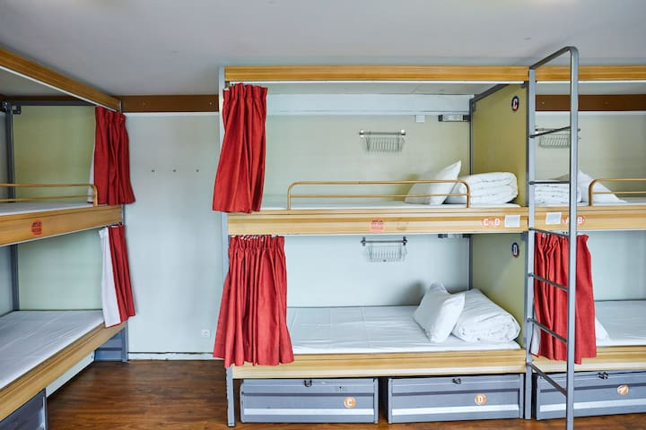 Bed in 12-Bed Mixed Dorm