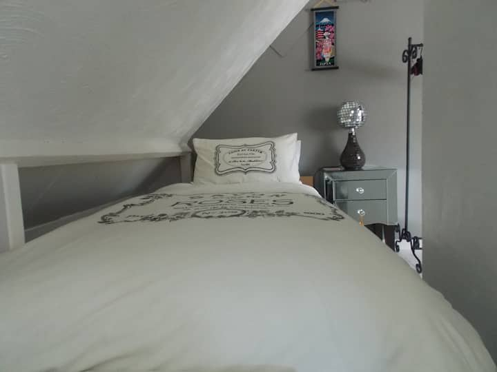 Unique Attic room, Central Newport