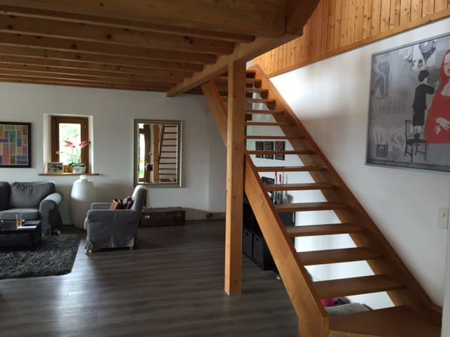 Beautiful appartment with view, 10 min from Geneva - Bellevue - Apartment