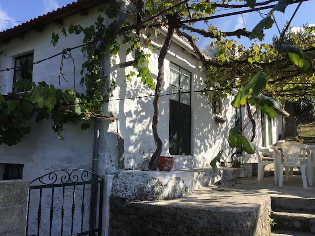 Casa D'Avó