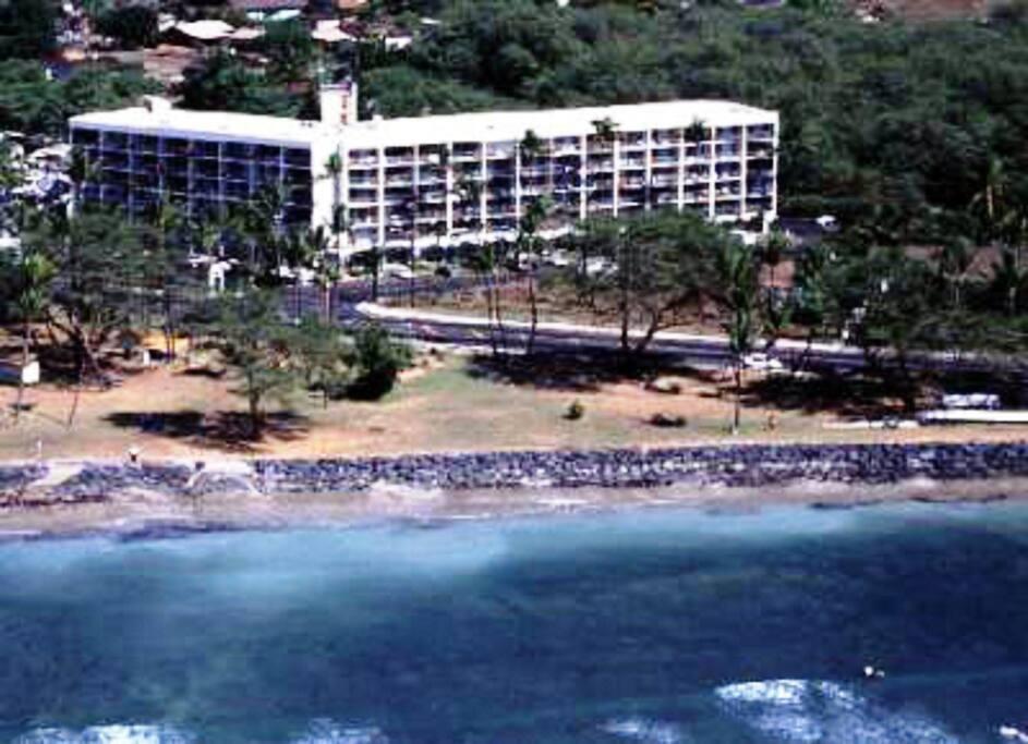 Island Surf building