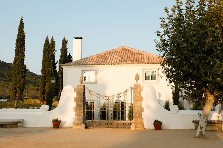 Once Upon House - Villa Moscatel